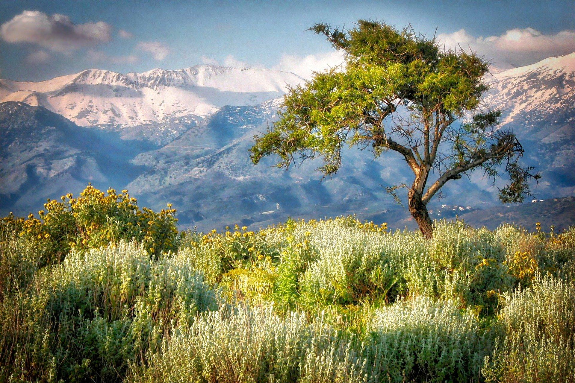 Live your winter in Crete!