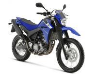 Yamaha XT 660 cc